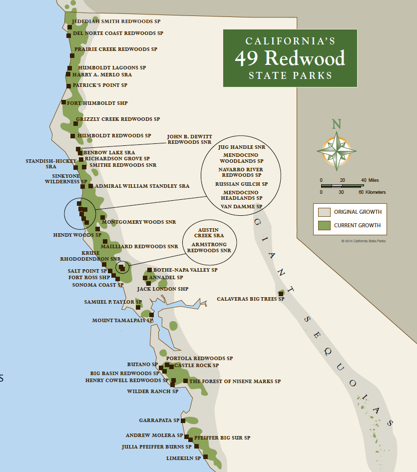 california redwoods state parks